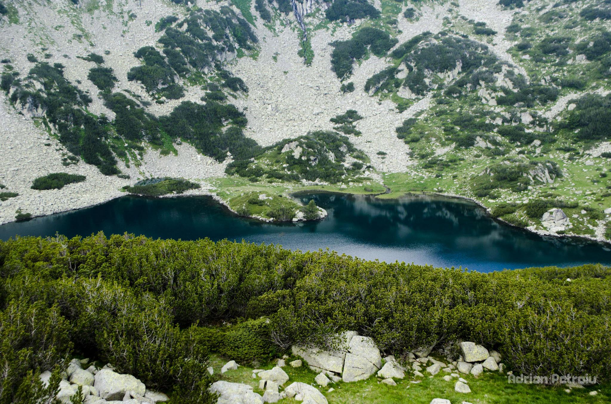Bulgaria: Cadoul