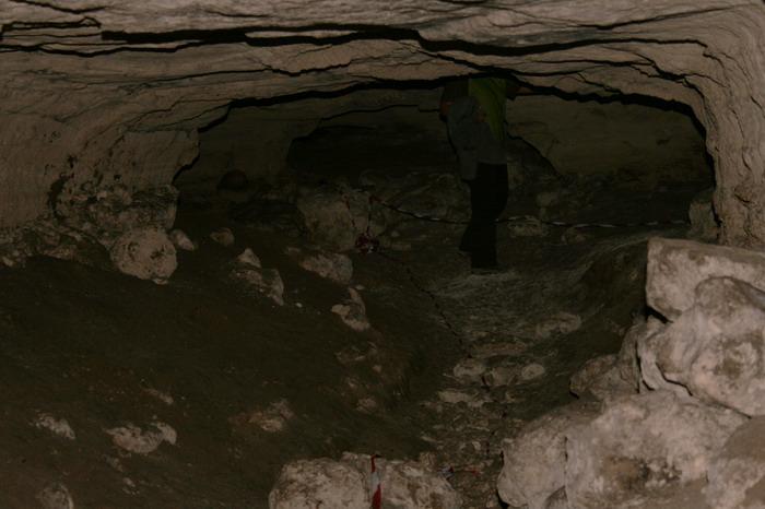 Cu privire la ape (2) – O călătorie prin Dobrogea interioară