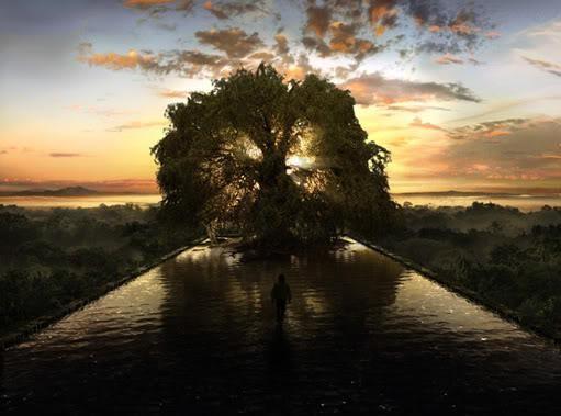 Povestiri din Dobrogea. Copacul de pe lacul Beidaud
